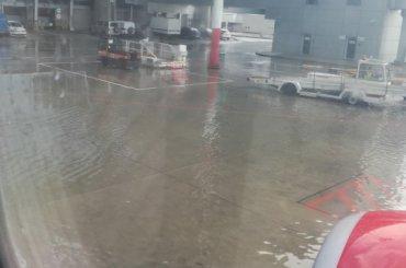 Пассажиры рассказали онебольшом «потопе» ваэропорту Пулково