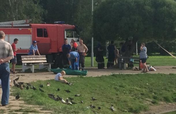 Женщина утонула вПолюстровском парке вПетербурге