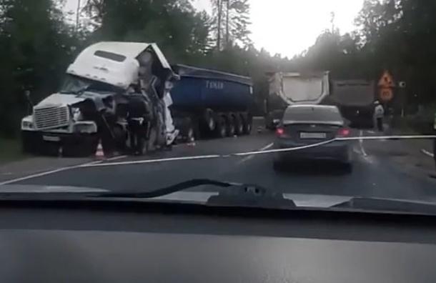 Два большегруза столкнулись лбами наПриозерском шоссе