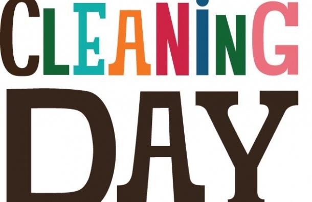 ВИнституте Финляндии пройдет День очистки