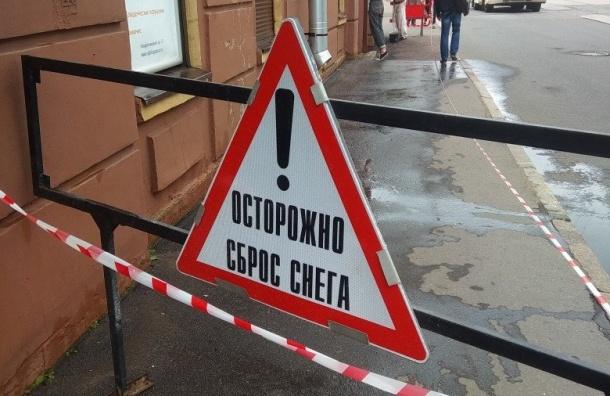 Петербуржцев предупредили о«сбросе снега» наодной изулиц