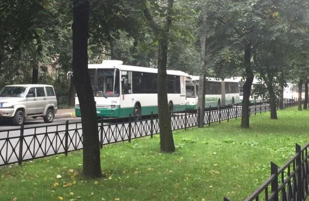 «Колоссальная» пробка изавтобусов собралась напроспекте Елизарова
