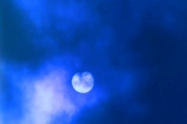 Петербуржцы наблюдали за«чернеющим» солнцем