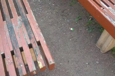 Чиновники нехотят верить всуществование скамеек вСлавянке