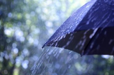 Дожди вернулись кпетербуржцам