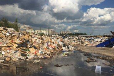 Экологи обнаружили наМалой Балканской улице смердящую свалку