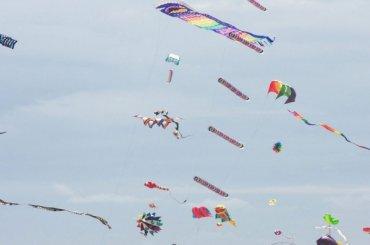 Дождь вПетербурге сорвал фестиваль воздушных змеев