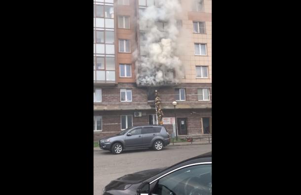 Черный дым повалил изгорящей квартиры вПетербурге