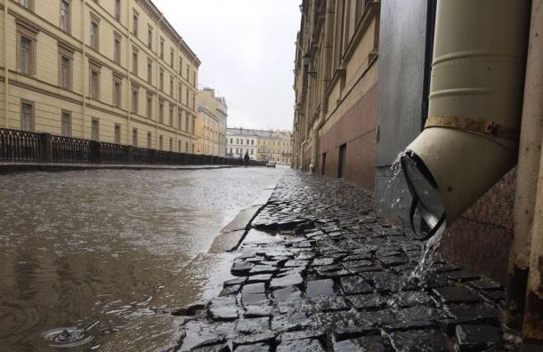 Сильный ветер унес солнечную погоду изПетербурга