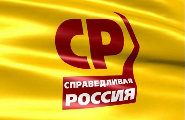 Петербургское отделение «Справедливой России» неверит всговор Гудкова иСмольного
