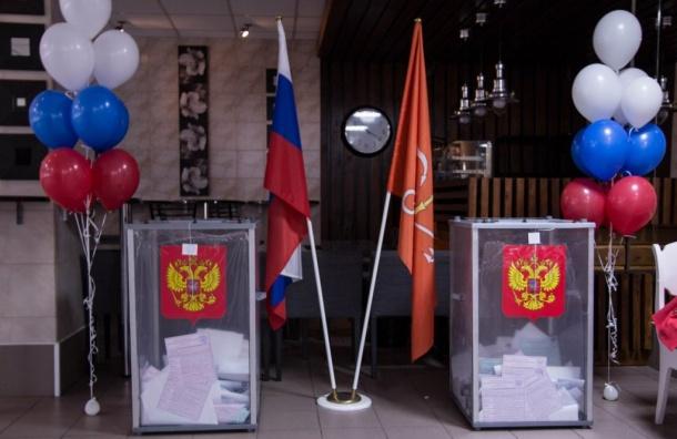Губернаторские выборы обойдутся петербуржцам в608 млн рублей