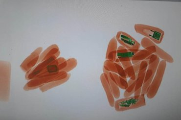 Нано-морковку-мобильник непустили впетербургское СИЗО