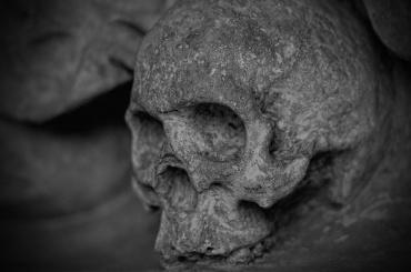 Детские останки вековой давности нашли вЛенобласти