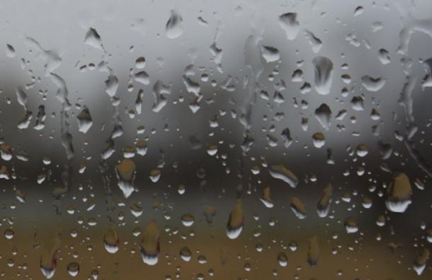 Москвичей ждет 16-часовой дождь