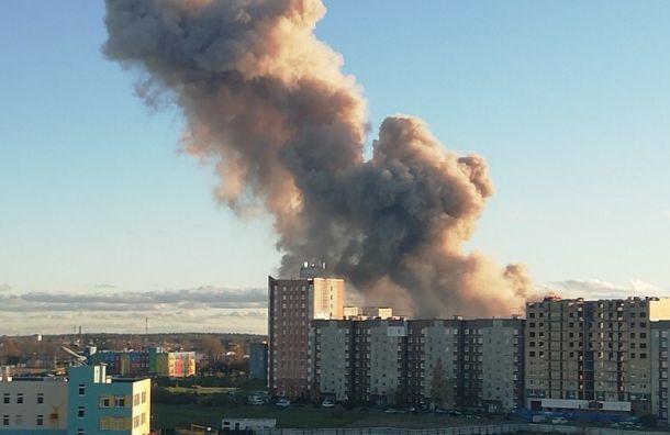 ВМЧС прокомментировали взрыв вГатчине