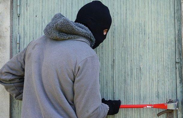 Полиция раскрыла серию краж измагазинов Петербурга на3,6 млн рублей
