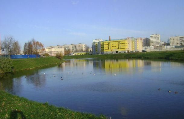 «Красивый Петербург» попросил Беглова очистить реку Новая