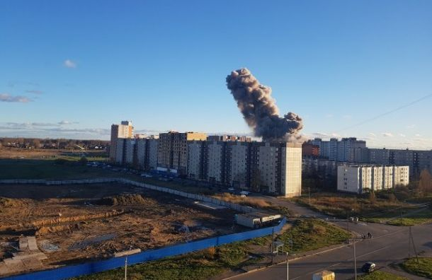 Инженер завода «Авангард» признал вину вовзрыве вГатчине