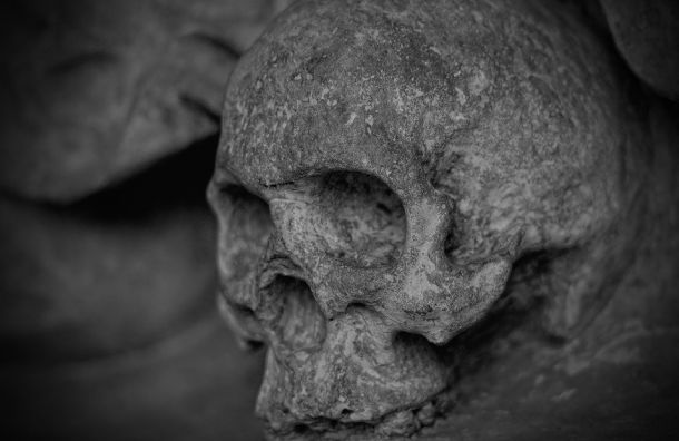 Человеческий череп нашли впожарном ящике спеском наСеверной ТЭЦ