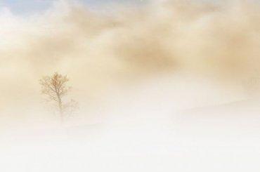 Рейс изСтаврополя вПетербург задержали вМоскве из-за тумана