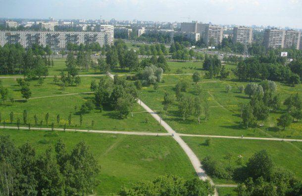 Парламент Петербурга выступил засокращение зеленых насаждений