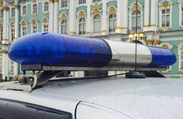 Московская школьница сбежала издома ради милостыни вПетербурге