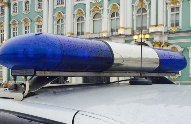 Активиста «Бессрочного протеста» задержали заплакат сПутиным