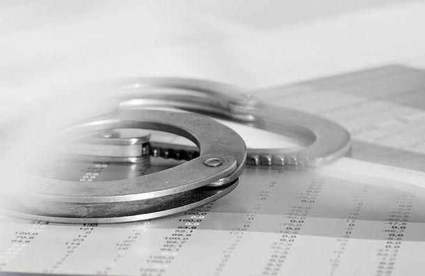 Экс-сотрудникаСК вПетербурге подозревают вкраже 11кг кокаина