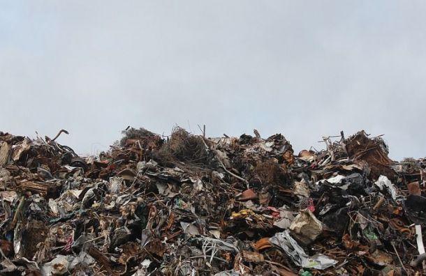 Более тонны опасных отходов утилизировали вПетербурге занеделю