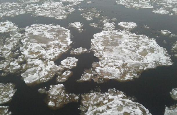 Колесов обещал первый ледоход наНеве