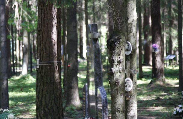 Школьники будут регулярно посещать мемориальное кладбище вЛевашово