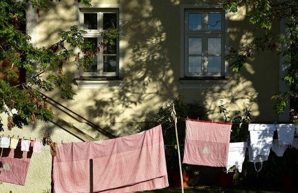 Петербуржцам помогут оформить дачные исадовые дома