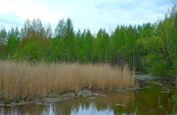 Активисты обсудили счиновниками судьбу Южно-Приморского парка