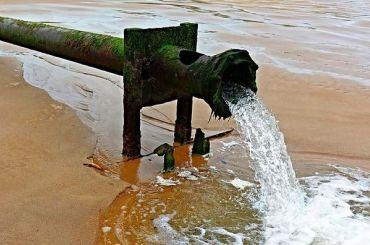Петербургская фирма сбросила сточные воды снефтью ифенолом
