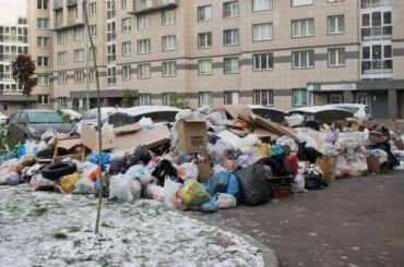 Когда никто неубирает: Славянку завалили мусором