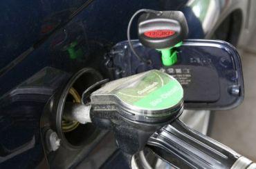 Оптовые цены набензин идизтопливо заморозили доконца года