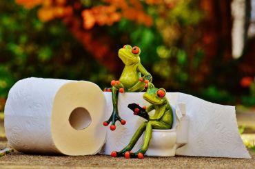 Роскачество выбрало лучшую туалетную бумагу
