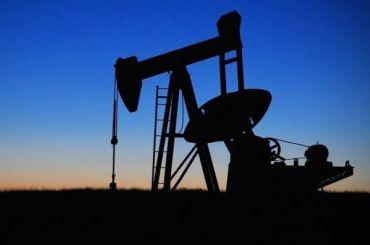 Набиуллина рассказала ориске падения цены нанефть до $35