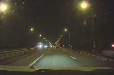 НаМурманском шоссе сбили насмерть лося
