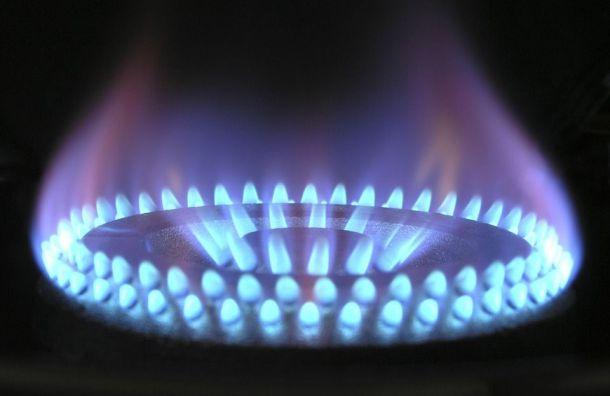Почти девять тысяч человек остались без газа вНовой Ладоге