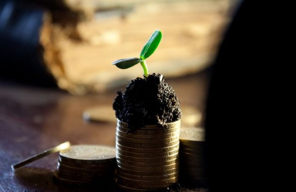 Минимальная зарплата петербуржцев вырастет натысячу рублей