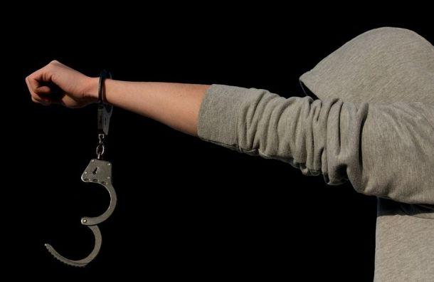 Несовершеннолетнюю студентку изБелоруссии изнасиловали вПетербурге