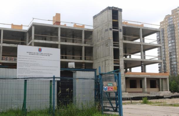 Только 9 школ из20 построят в2019 году вПетербурге