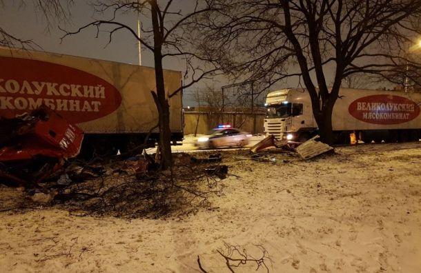 Гололед стал причиной мелких аварий вПетербурге