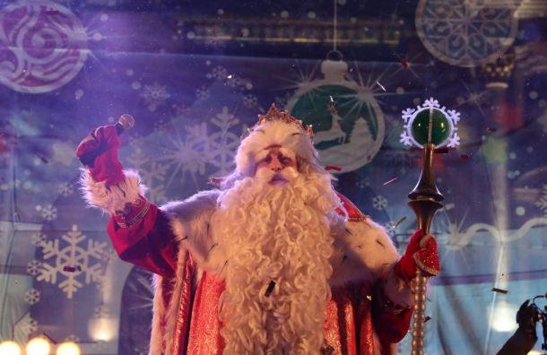 Дед Мороз наДворцовой объявил начало новогодних праздников