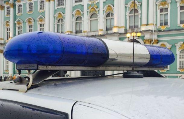 Трое неизвестных ограбили «Продукты» спомощью газового баллончика