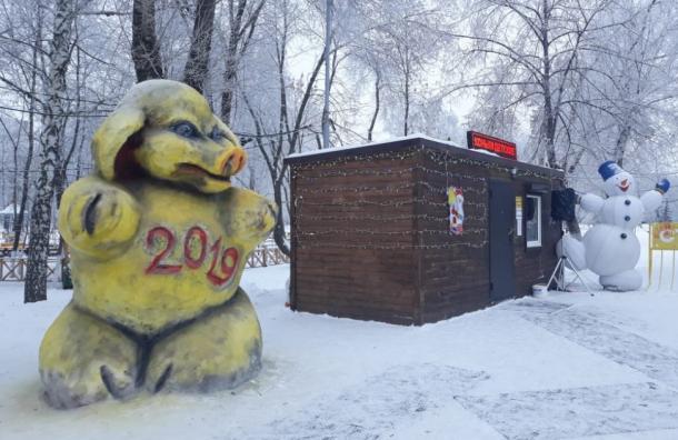 Жители Самары испугались снежной свиньи изместного парка