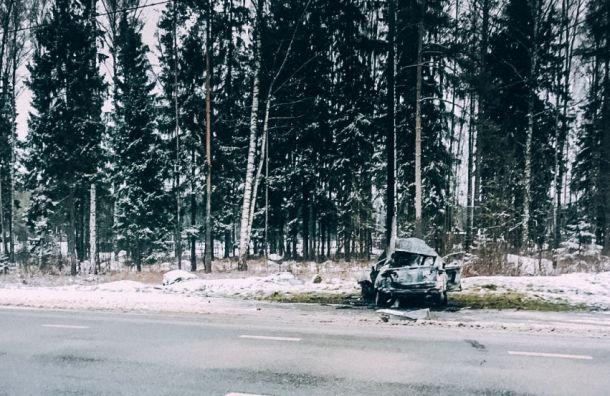 Девушка сгорела ваварии наМурманском шоссе