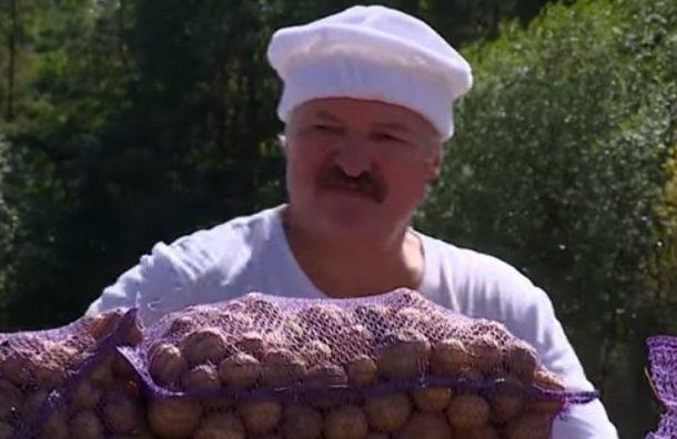 Лукашенко подарил Путину четыре мешка картошки