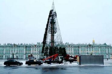 Главную елку Петербурга начали устанавливать наДворцовой площади
